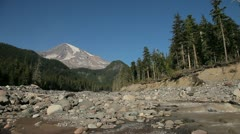 Small Stream at Base of Mount Rainier Stock Footage