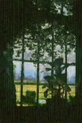 Vineyard through a window Stock Illustration