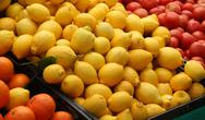 Stock Photo of Lemons, tomatoes and oranges