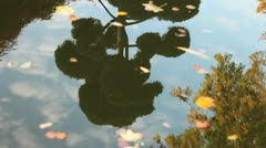 autumn tree water reflection - stock footage