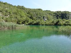 Stock Photo of Green blue lake in nature
