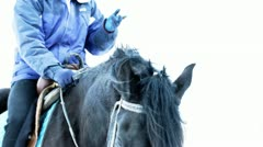 Breathing of black horse in winter Stock Footage