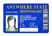 Generic female state identity card Stock Illustration