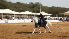 Riders show off fine Arabian horse riding during the national championship Stock Footage