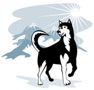 Husky wild dog wolf retro Stock Illustration