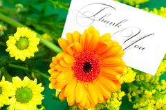 yellow daisy,gerbera and card signed thank you on green background - stock photo