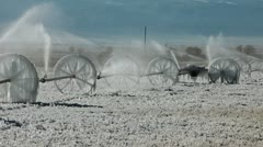 Ice on irrigation farm field agriculture - stock footage
