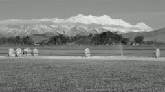 Mount Nebo farm irrigation sprinkler freeze ice BW Stock Footage