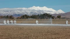 Mount Nebo farm irrigation sprinkler freeze ice fast motion Stock Footage