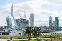 the park and embankment near the bridge erasmus of rotterdam. netherlands - stock photo