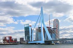 Erasmus bridge in  rotterdam . netherlands Stock Photos