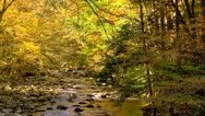 Autumn rocky river tennessee fall Stock Footage