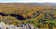 big carp river in fall color - stock photo