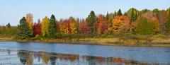 Autumn colors on the lake Stock Photos