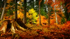 wild mountain landscape in autumn - stock footage