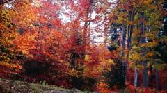 Wild mountain landscape in autumn Stock Footage