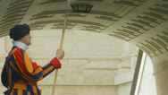 Side view of a Swiss Guard Stock Footage