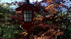 Shinto Shrine Lantern And Fall Colors - stock footage