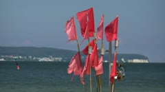 Red Flags in the Wind - Chalk Cliffs on Rügen Island - Baltic Sea, Germany Stock Footage