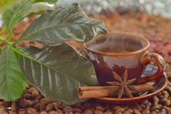 cinnamon, anise and coffee beans - stock photo