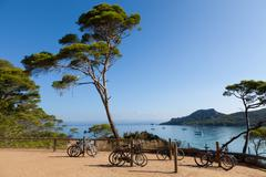 porquerolles island in france - stock photo