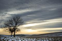 Beautiful colorful sunset over winter landscape Stock Photos