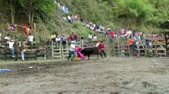 BANOS, ECUADOR - 28 OCTOBER 2012: Improvised bullfights for the city ceremony Stock Footage