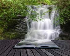 Stock Illustration of stunning waterfall flowing over rocks through lush green forest with long exp