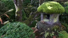 Mossy Stone Lantern In Japanese Garden At Nikko Stock Footage