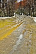 Muddy Dirt Road Stock Photos