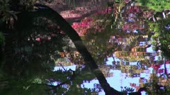 Reflections In Japanese Garden Pond At Nikko Stock Footage