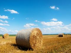 Countryside landscape with bales of hay Stock Photos