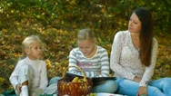 Mother And Children At Picnic In The Park Stock Footage