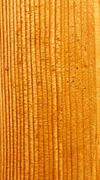 Lacquered wooden board Stock Photos