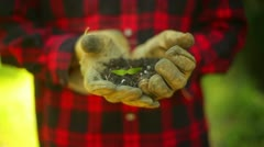 Plant holding dirt Stock Footage