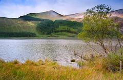 landscape over llyn cwellyn in snowdonia national park towards mountains in d - stock photo