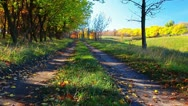 Autumn road Stock Footage