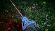 Rake fall autumn Stock Footage