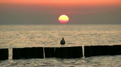 Beautiful Sunset Ocean Arkistovideo