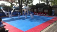 Stock Video Footage of Jeollabuk do provincial martial arts team performs taekwondo exhibition