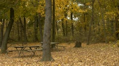 Picnic area in park Stock Footage