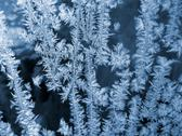 Stock Photo of blue frosty natural pattern