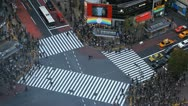 Japanese Folks Visitors Visiting Colorful Busy Street Intersection Traffic Tokyo Stock Footage