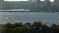 Numereous Sailboats on the Charles River in Boston Stock Footage