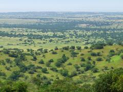 Aerial view of the kabwoya wildlife reserve Stock Photos
