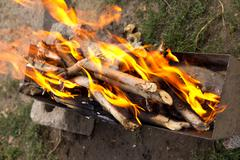 fire from burning wood - stock photo