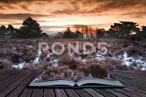 Stock Illustration of winter sunrise coming out of pages in magic book