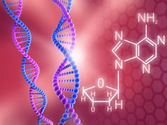 DNA Strands - stock illustration