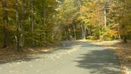 Autumn park road Stock Footage