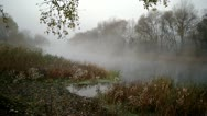 Morning with mist over river Stock Footage